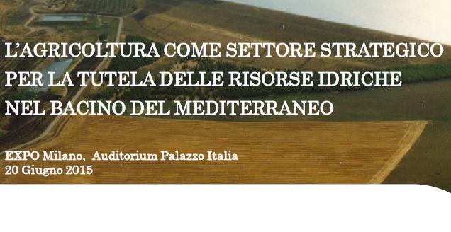 L'agricoltura come settore strategico per la tutela delle risorse idriche nel bacino del Mediterraneo