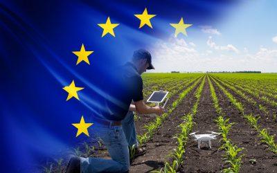 La strategia di intervento del Ministero delle politiche agricole alimentari e forestali nell'ambito del Piano Nazionale di Ripresa e Resilienza