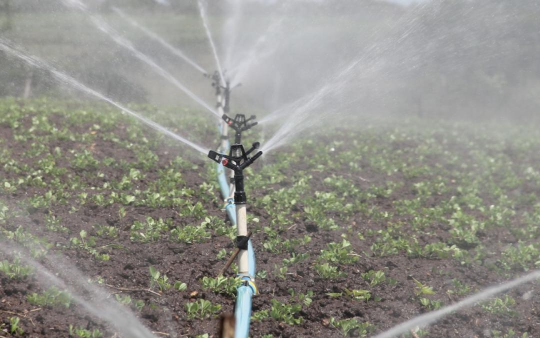 """Eccellenze Rurali – Call for proposal """"Gestione della risorsa idrica"""""""